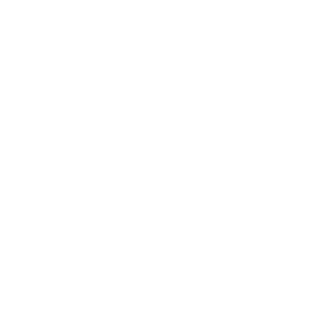 Android logo (white)